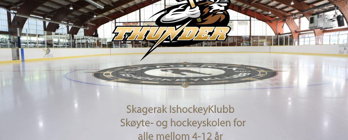 Skøyte Skole 2018-2019